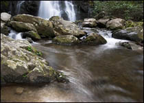Spruce Flat Falls, Tremont, Great Smoky Mountains National Park, Tennessee